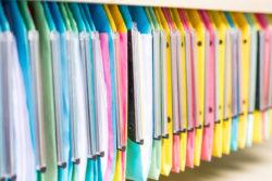 dossiers multicolore dans tagre de bureau